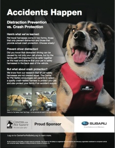 Subaru pet safety poster