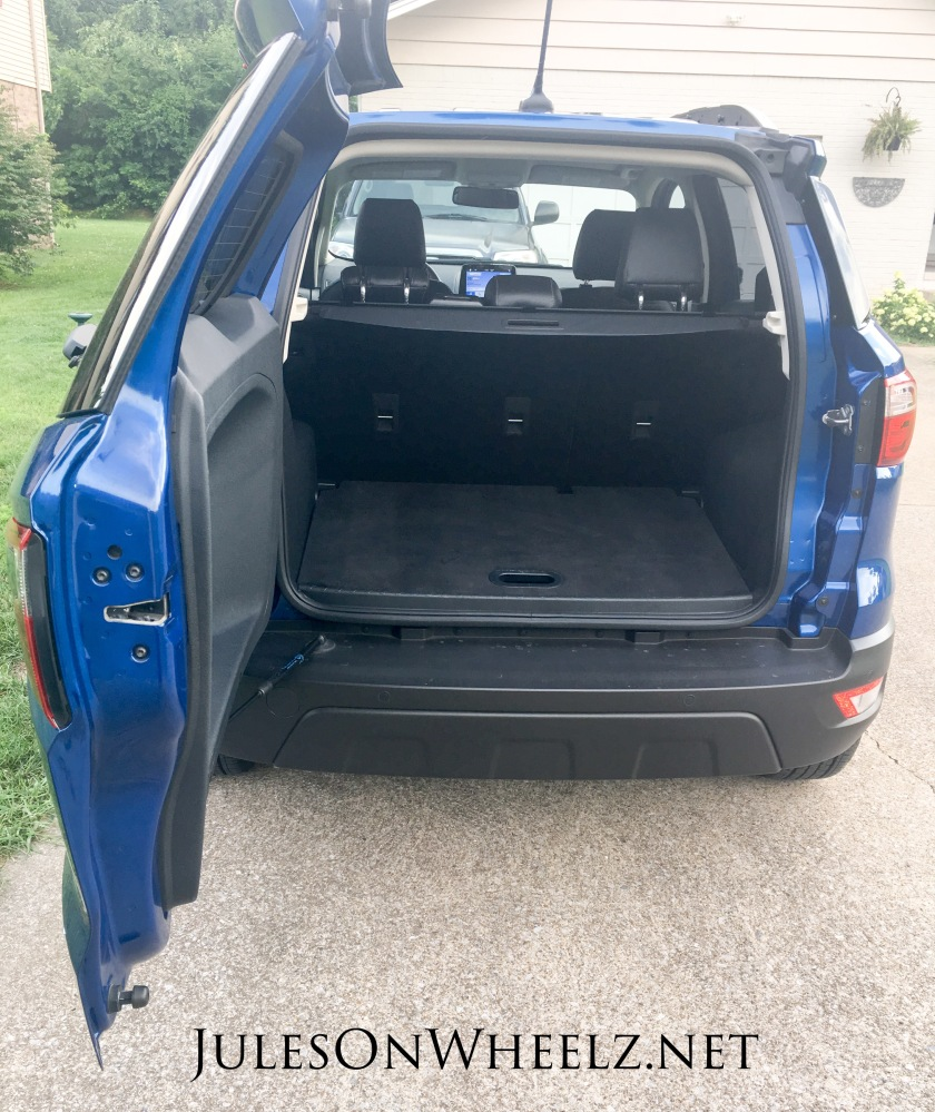 rear door EcoSport